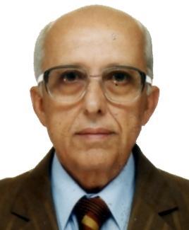 Luis Barroso Loques